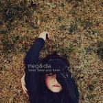 2009_MegDia_HereHereandHere