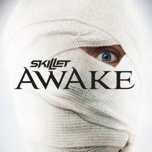 2009_Skillet_Awake