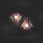 2014_TheLastBison_VA