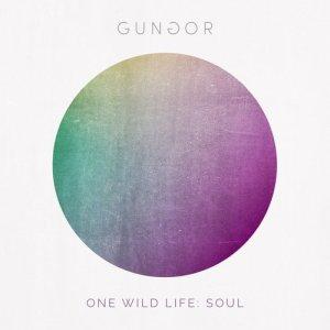 2015_Gungor_OneWildLifeSoul